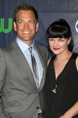 LOS ANGELES - JUL 17:  Michael Weatherly, Pauley Perrette at the CBS TCA July 2014 Party at the Pacific Design Center on July 17, 2014 in West Hollywood, CA