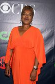 LOS ANGELES - JUL 17:  CCH Pounder at the CBS TCA July 2014 Party at the Pacific Design Center on July 17, 2014 in West Hollywood, CA