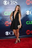 LOS ANGELES - JUL 17:  Andrea Navedo at the CBS TCA July 2014 Party at the Pacific Design Center on