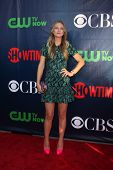 LOS ANGELES - JUL 17:  A.J. Cook at the CBS TCA July 2014 Party at the Pacific Design Center on July