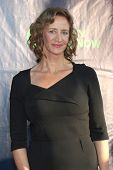 LOS ANGELES - JUL 17:  Janet McTeer at the CBS TCA July 2014 Party at the Pacific Design Center on J