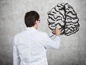 Doctor Examines Brain