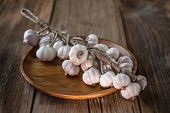 Bunch Of Dried Garlic Bulbs On A Wooden Table