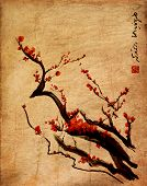 Sakura cherry blossom plum chinese brush painting