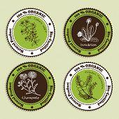 Set of Natural Organic Product badges