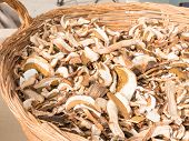 Dried Porcini Mushrooms In Wicker Bowl