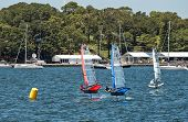 Moth hydrofoils on Sydney Harbour