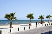 image of larnaca  - Seaside Avenue Foinikoudes Larnaca pedestrian promenade with benches finikas palm trees Cyprus on Mediterranean Sea - JPG