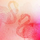vector vintage illustration of pink watercolor flamingos on the