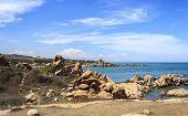 KeGa coastline