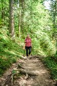 Female Hiker in the forest