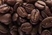 Guatemala Roasted Coffee Beans