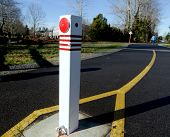 Walk In A City Park Alone The Yellow Line