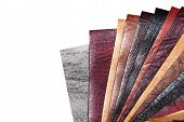 Color samples of different leather