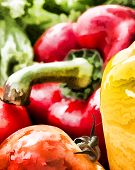 Bell Pepper Vegetables Represents Colored Peppers And Healthy