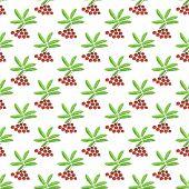 Berries seamless pattern - vector berry texture