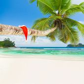 Red Santa Hat On Palm Tree At Exotic Tropical Beach