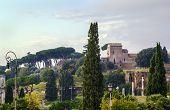 View Of Palatine, Rome