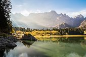 Autumn Morning In The Alps