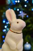 New year rabbit 2015
