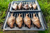Smoked Fish Home Cooking On The Outdoors
