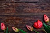 picture of bittersweet  - Red tulips flowers bouquet on old wooden table background - JPG