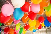 pic of floating  - Colorful balloons floating on the ceiling of a party - JPG