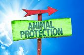 pic of animal cruelty  - Animal Protection sign with sky background - JPG