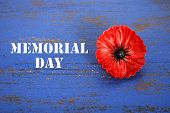 picture of memorial  - USA Memorial Day concept of red remembrance poppy on dark blue vintage distressed wood table with title text - JPG