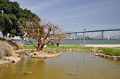 stock photo of shoreline  - Distant view of the San Diego - JPG