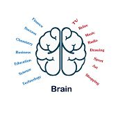 pic of right brain  - The right and left brain show different idea on white background - JPG