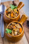 picture of stew  - Portion of traditional beef stew with carrots - JPG