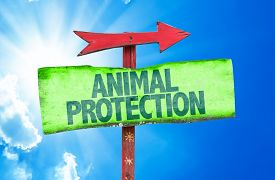 picture of animal cruelty  - Animal Protection sign with sky background - JPG