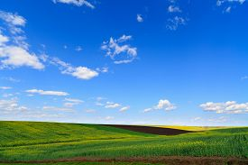 pic of farm landscape  - landscape with a farm field under sky with clouds - JPG