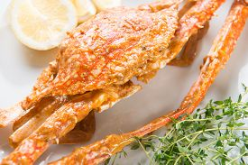 stock photo of cooked crab  - Close up cooked delicious hot and spicy sauce blue crab - JPG