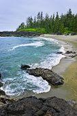 Coast Of Pacific Ocean In Canada
