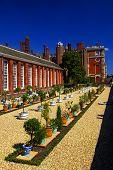 Hampton Court  Oranges Garden