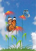 Beautiful flower and butterfly. Vector.