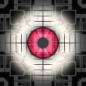 Closup Of Eyeball