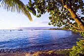 Lahaina Shore, Maui