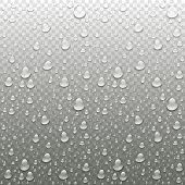 Realistic Vector Water Drops Transparent Background. Clean Drop Condensation Illustration poster