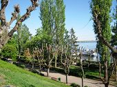 Embankment of the Volga river in the city of Saratov