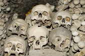 foto of gruesome  - Six human skulls are piled on top of each other in a ossuary  - JPG
