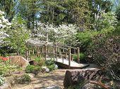 Footbridge - Sayen Gardens