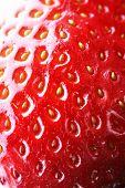 Strawberry.  Shallow DOF!