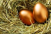 Two gold eggs in nest close up