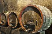 Three Old Wine Barrels