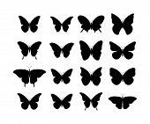 Butterfly Black Icons. Collection Black Butterflies. Isolated Black Butterflies. Butterfly Icons poster