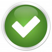 Validation Icon Green Button
