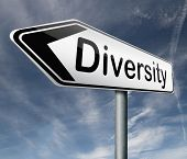 Diversity towards diversification in culture ethnic social age gender genetics political issues road
